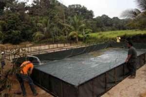 modal bina kolam ikan air tawar jenis tanah - ternakan ikan